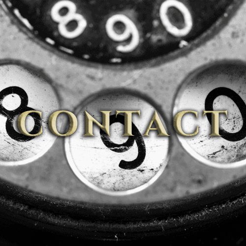 Contact New Transtion