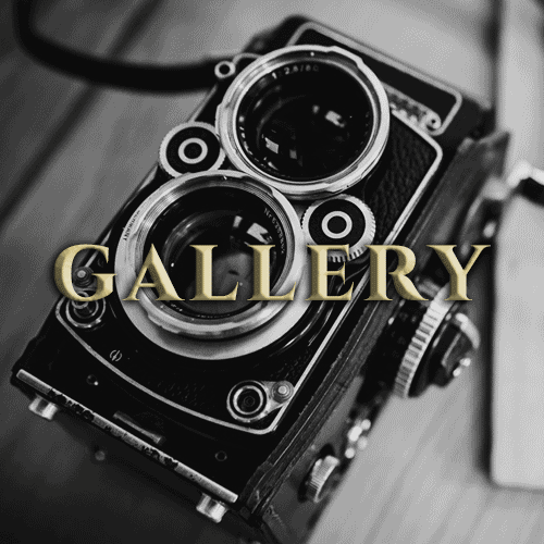 Gallery New Transition